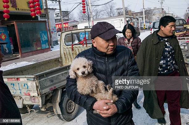 A man carries his dog on a road amid cold weather at Tuntou village on the outskirts of Shijiazhuang Hebei province on January 22 2016 Schools have...
