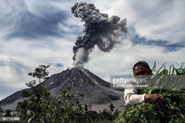 TOPSHOT A man carries his harvest from his vegetable field as Mount Sinabung spews thick smoke in Karo North Sumatra on January 6 2018 Mount Sinabung...