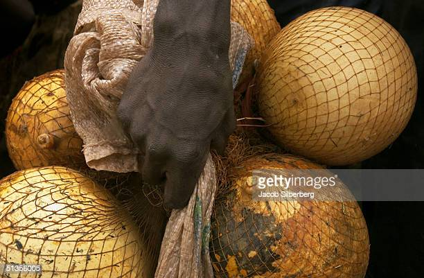A man carries the gourds he will use to help him float during the Argungu Fishing Festival on March 20 in Argungu Nigeria The Argungu Fishing...