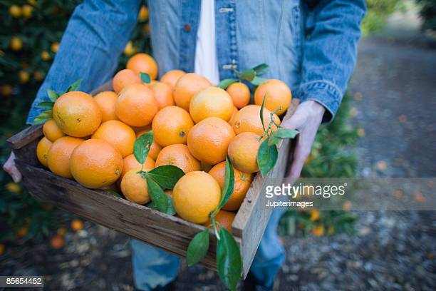 Man carrying a crate of oranges