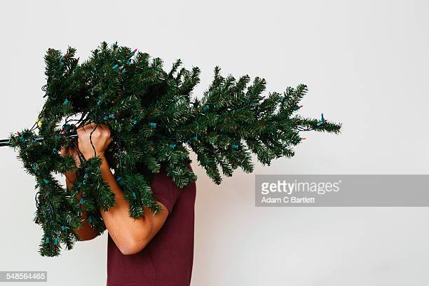 man carrying artificial christmas tree - fake stock pictures, royalty-free photos & images
