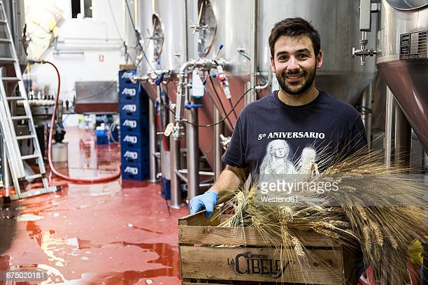 Man carrying box with barley in beer factory