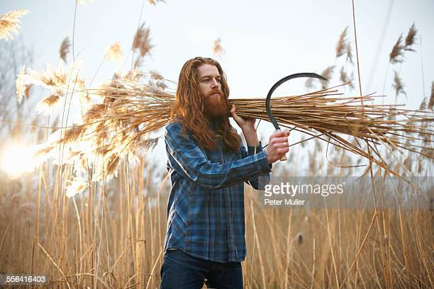 Man carrying bundle of wheat