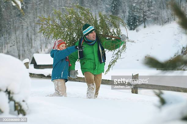 Man carrying Christmas tree whilst holding son's (8-10) hand, boy pointing