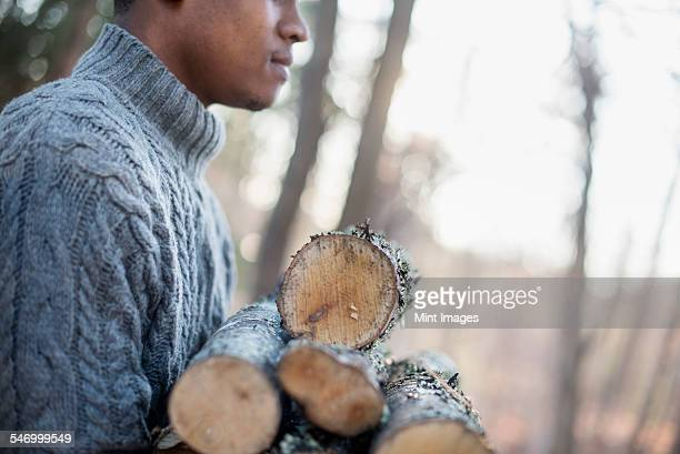 man carrying firewood in forest in autumn. - firewood stock pictures, royalty-free photos & images