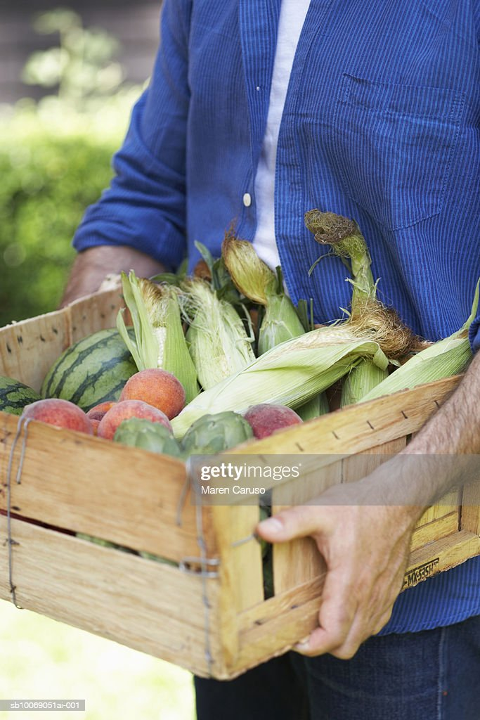 Man carrying wooden box filled with corn in husks, peaches and watermelon, close-up, mid section : Stockfoto