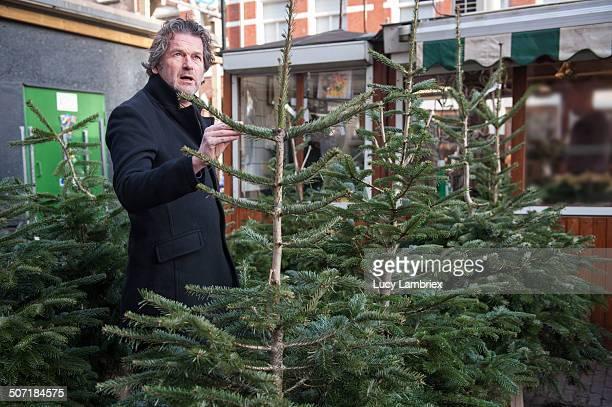 Man choosing a Christmas Tree