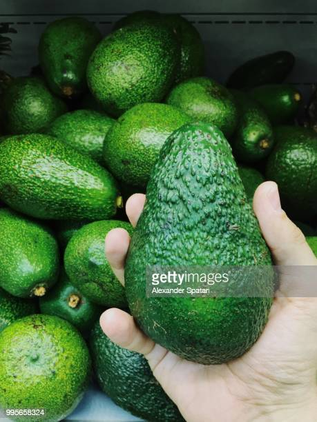 man choosing avocado in the supermarket - avocado stock pictures, royalty-free photos & images