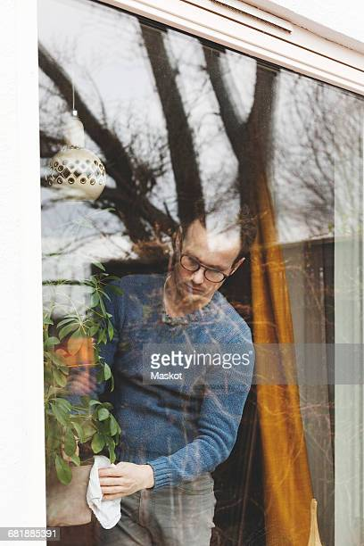 Man cleaning potted plant at home seen through glass window