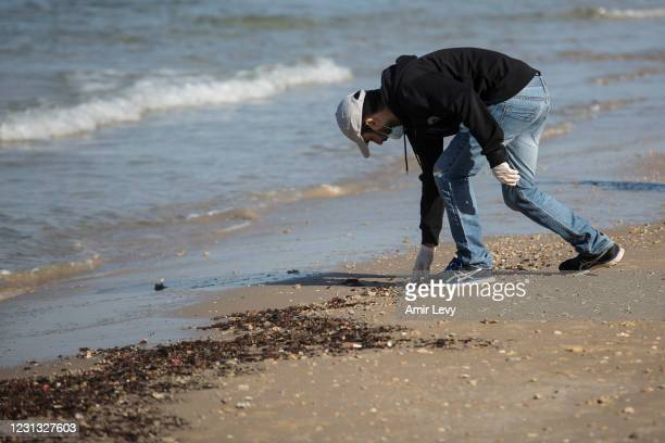 Man cleans tar from the sand as part of the beach cleanup effort after tar covered Israel's coast on February 22, 2021 in Hadera, Israel. Tar started...
