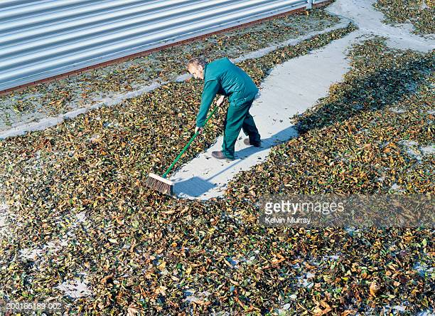 Man clearing leaves with brush, elevated view
