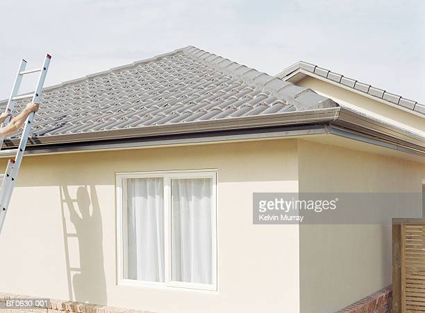 man climbing ladder against side of house, shadow on wall - roof stock pictures, royalty-free photos & images