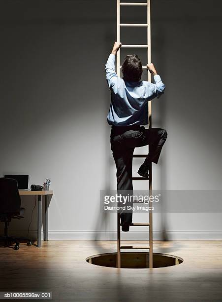 Man climbing on ladder coming through hole in wooden floor, rear view