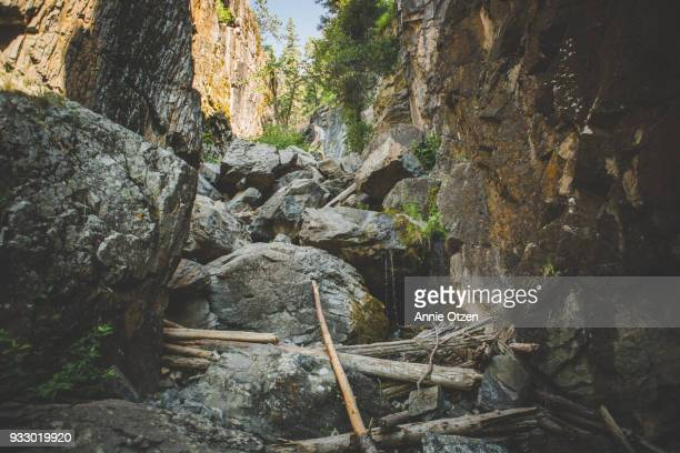 man climbing over bolders in a gulch - black hills stock photos and pictures