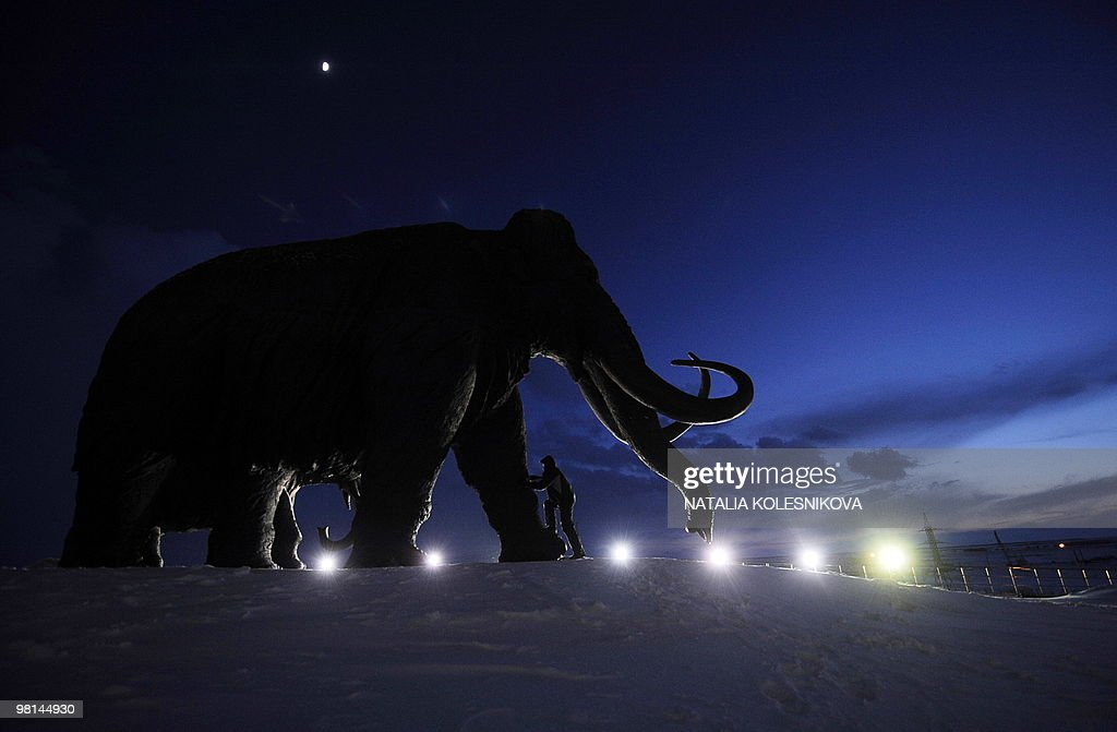 A man climbs a bronze sculpture of a mammoth in the western Siberian city of Khanty-Mansiysk on March 24, 2010.