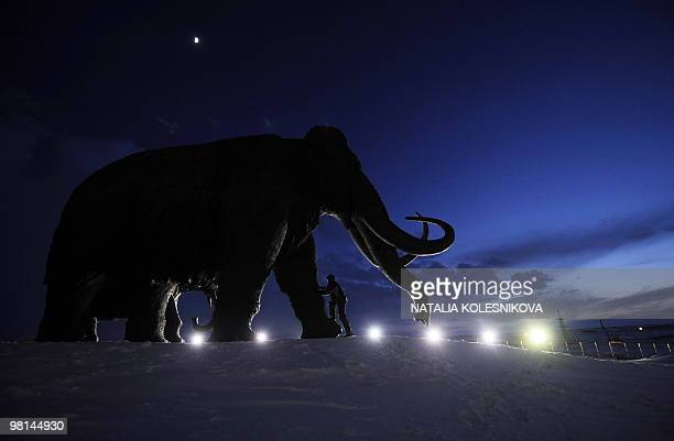 A man climbs a bronze sculpture of a mammoth in the western Siberian city of KhantyMansiysk on March 24 2010 AFP PHOTO/NATALIA KOLESNIKOVA
