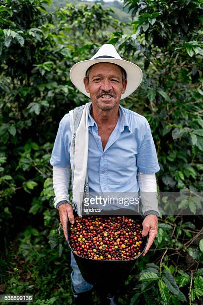 Man collecting coffee beans at a farm