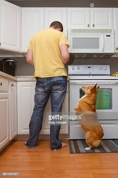 Man cooking with a begging dog