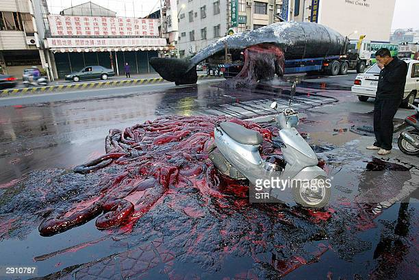 A man covers his nose after a 45ton dead perfume wale body exploded on the srteet of Tainan 26 January 2004 The 17meter whale exploded spewing...