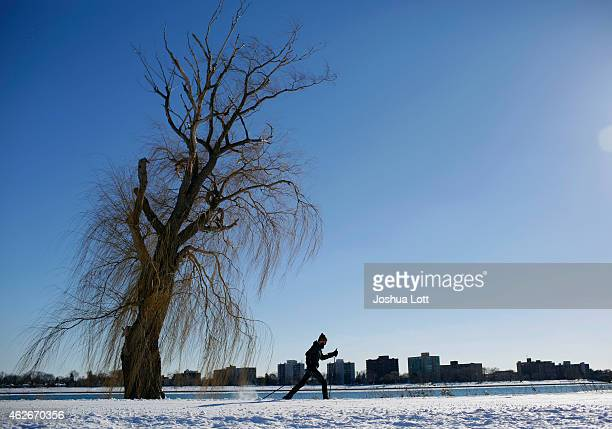A man cross country skis along the Detroit River on Belle Isle February 2 2015 in Detroit Michigan Detroit received over a foot of snow during a...
