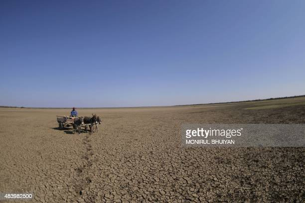 A man crosses the dried Bokaa Dam with a donkey cart on the outskirts of Gaborone on August 14 2015 in Botswana The dam with a capacity of 185...