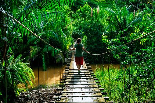 Man crossing a suspension bridge in Costa Rica seen from behind - gettyimageskorea