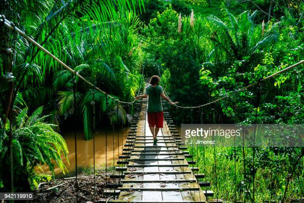 Man crossing a suspension bridge in Costa Rica seen from behind