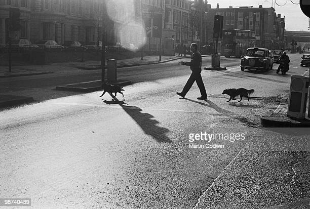Man crossing Brixton road with his dogs in front of taxi January 1988