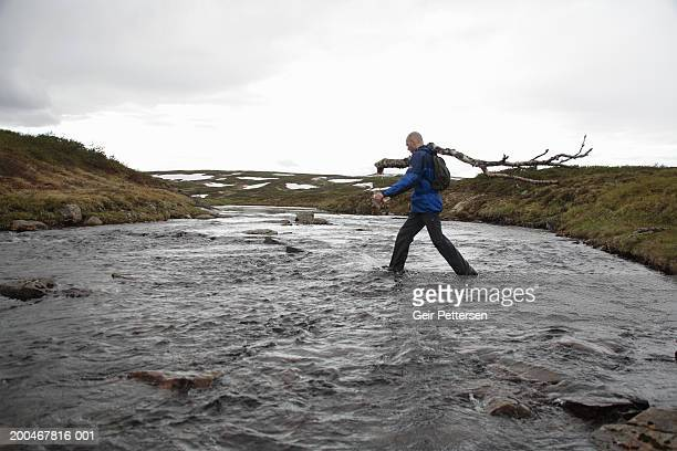 man crossing stream, carrying branch, side view - wading stock pictures, royalty-free photos & images