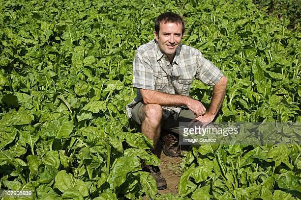 Man crouching in field