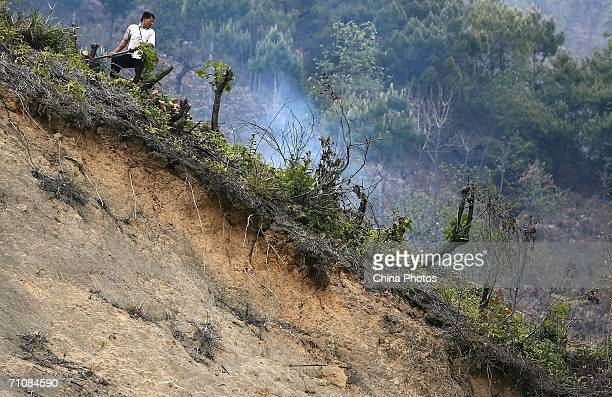 A man cuts firewood on a mountain at a village on March 17 2006 in Panwa Kachin State Special Region 1 of Kachin State Myanmar The Kachin State...