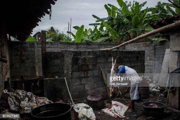 A man cuts up a dog during the slaughter process at a dog meat butchery house on July 27 2017 in Yogyakarta Indonesia Indonesians have seen a...