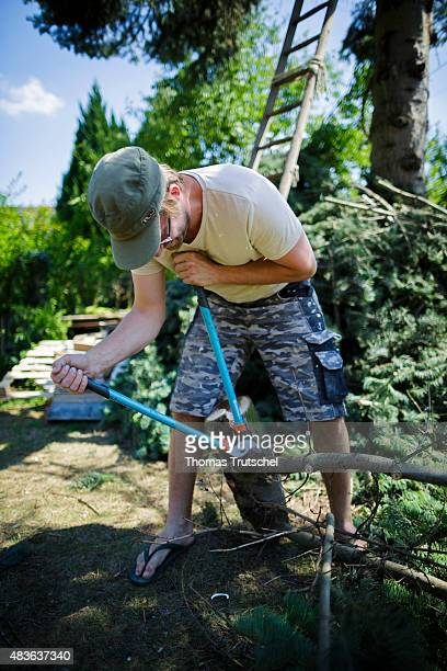 A man cuts with pruning shears off a branch of a tree trunk on August 02 2015 in Berlin Germany