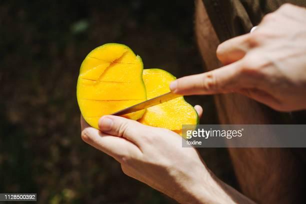 man cutting a mango with knife, seychelles - mango stock-fotos und bilder