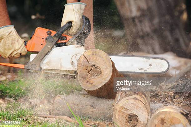 Man cutting a tree trunk with roaring chainsaw on the ground
