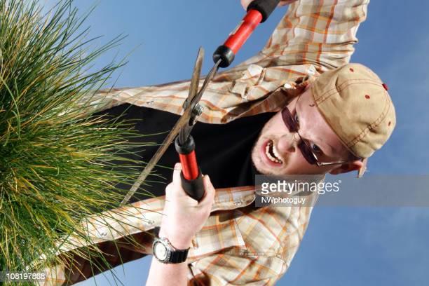 Homme coupe l'herbe avec des Clippers