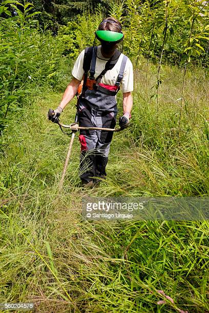 Man cutting weeds with a weed trimmer