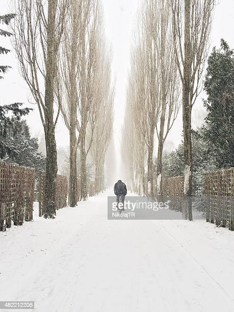 Man cycling along road in snow, Copenhagen, Denmark
