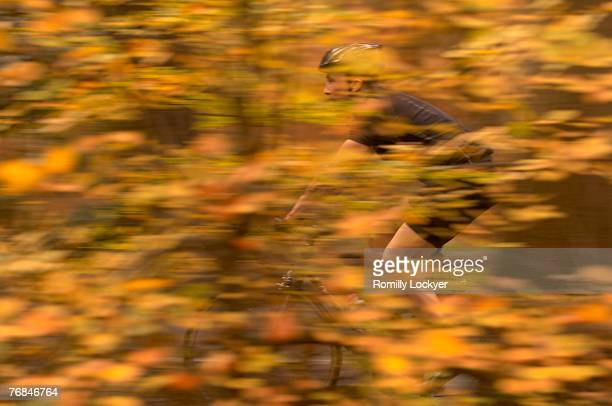 Man cycling in Autumn woods