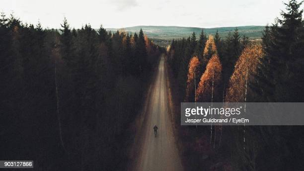 Man Cycling On Road In Forest