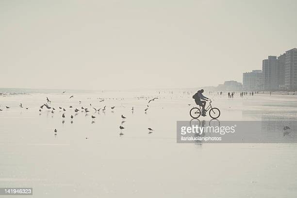man cycling - jacksonville beach stock pictures, royalty-free photos & images
