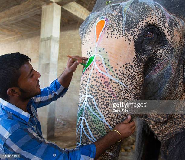 man decorating elephant for tourists. - elephant handler stock pictures, royalty-free photos & images