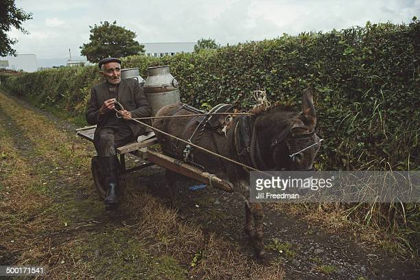 A man delivering milk by donkey cart in Ireland 1988