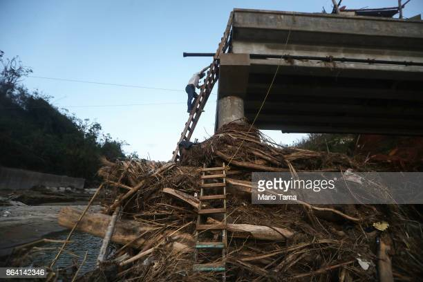 A man descends a makeshift ladder reaching from the top of a broken bridge spanning the Vivi River on October 20 2017 in Utuado Puerto Rico The...