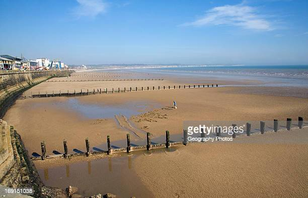 Man digging for worms on sandy beach, Bridlington, Yorkshire, England with groynes and sea wall.