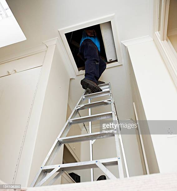 Man disappearing into attic up aluminum stepladder