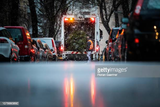A man disposes christmas trees on January 09 2019 in Berlin Germany