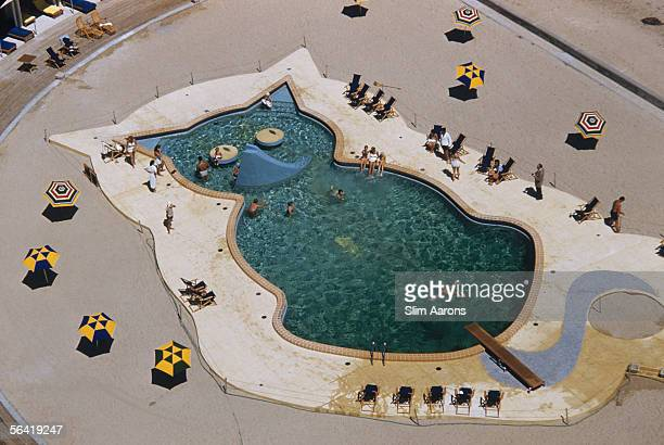 A man dives into an outdoor swimming pool in the shape of a cat at Fontainebleau Hotel Miami Beach Florida 1955