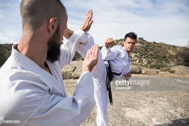 Men shaking hands during a martial arts training stock photo getty similar images m4hsunfo