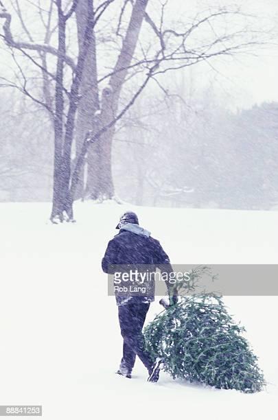 Man dragging Christmas tree through snow
